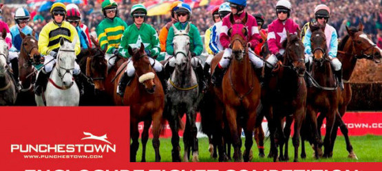 Punchestown Reserve Enclosure Ticket Competition